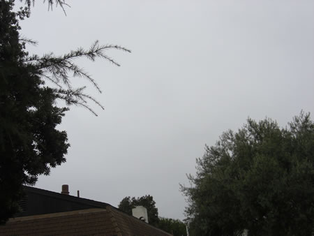 gloom2.jpg